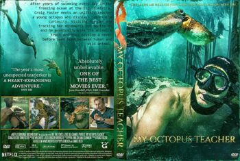 My Octopus Teacher 2020 DVD Cover